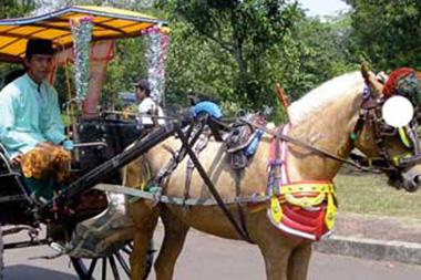 kuda-bendi